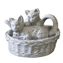 Kittens At Play 8