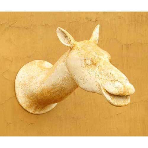 Camel Head 31