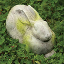 Charles Rabbit