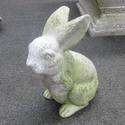 Baby Girl Bunny 8H