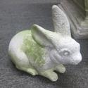 Baby Boy Bunny 7H