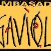 Ambasada_gavioli_logo_2