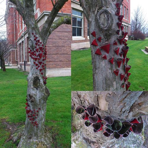 Full treecones rebeccalynch