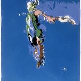 Medium swimmer 2