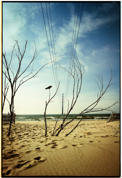 Full beach1