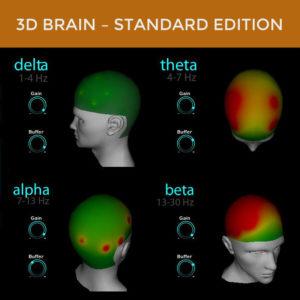 3DBrain-standard