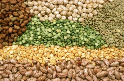 Legumes are another starch source