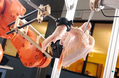 A robotic system used in the Intelligent Cutting and Deboning project prepares to slice through the shoulder joint of a chicken. The system, developed by the GTRI Food Processing Technology Division, is pursuing two goals: cutting close to the bone to maximise breast meat yield and ensuring food safety by avoiding creation of bone chips.