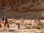 Exclusive camel trek to Petra, Jordan
