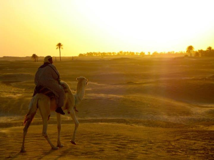 Tunisia Adventure Experiential Tours with Sahara Camel Trek.