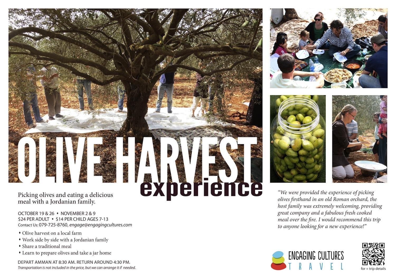 Jordan Olive Harvest Tour 2013