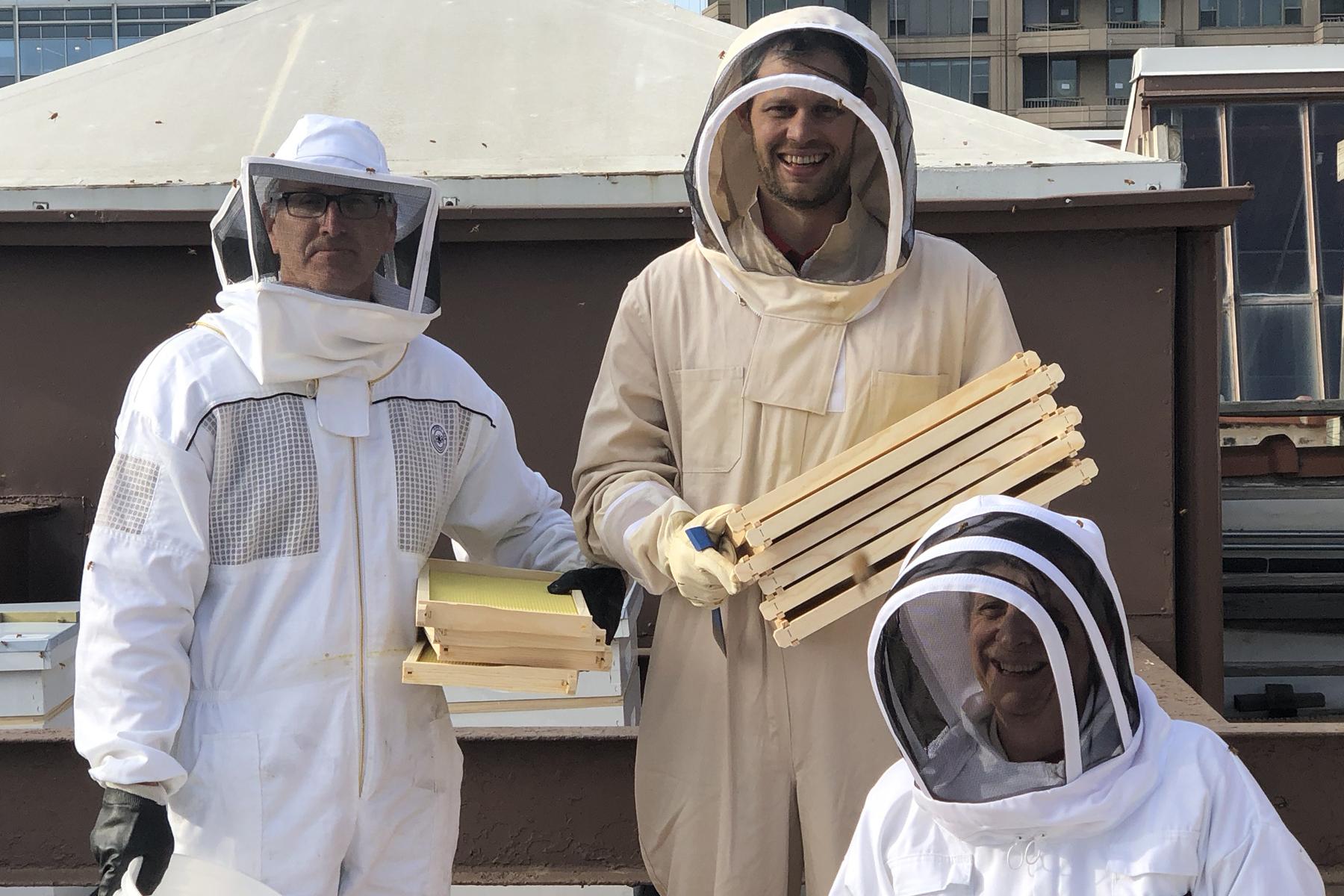 Beekeeping01.jpg?mtime=20180514102829#as