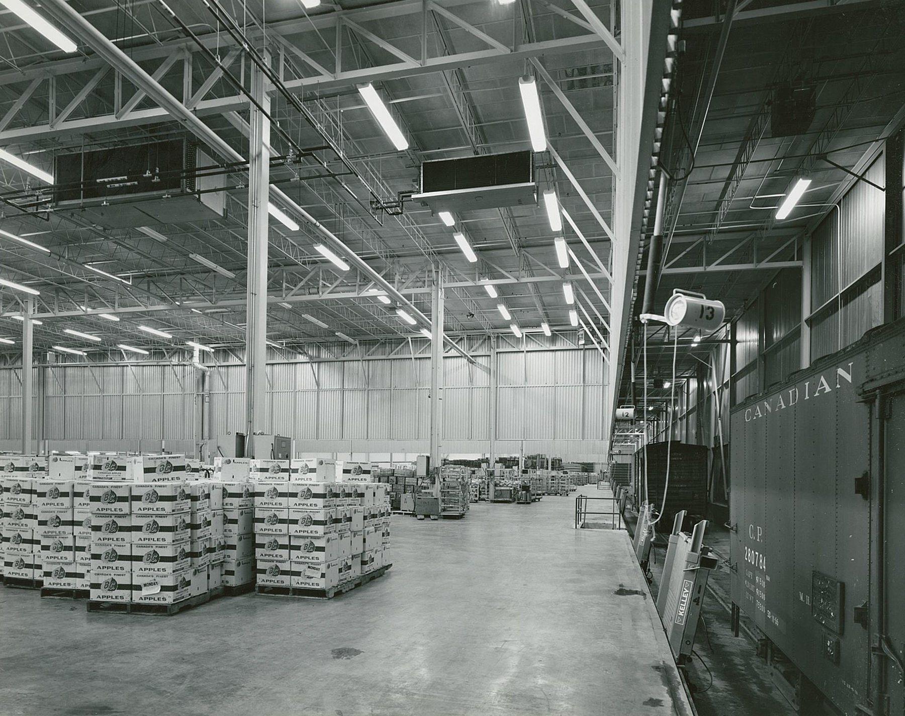 Supermarkets-General-Corporation_Woodbri