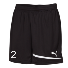 Heat United Pulse Shorts