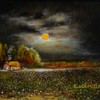Moonlight_cotton_field_small_idas_8_x_10_2012
