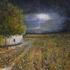 Moonlight_over_socorro_cotton_field_2_aug_2013