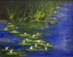 White_water_lilies