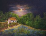 Moonlight_over_the_bluebonnets