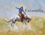 Rodeo_rider_fb