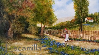 Along_the_bluebonnet_path_fb
