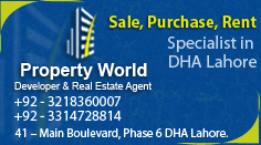 Property World Left Side Banner