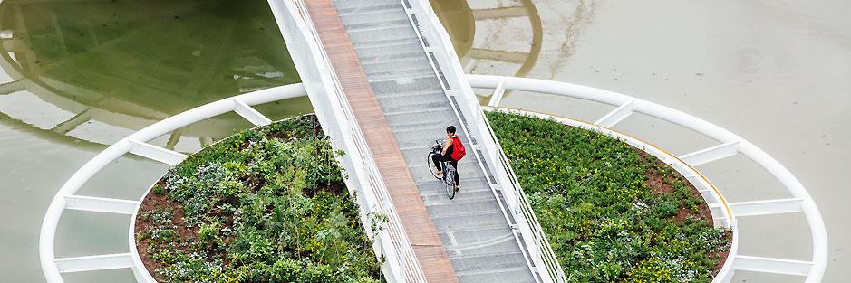 Friedrich Bayer Bridge. São Paulo, Brazil