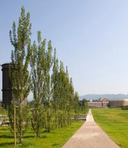 Parco Tarello