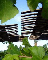 Descanso En Los Viñedos _ Arquitecto : Macarena Avila Burdiles