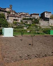 """Agricoltura urbana - """"Orto di Fedro"""""""