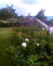 Un angolo di Charente