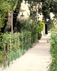 Villa Freya Stark, Parco Archeologico