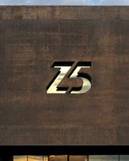 Z5. Zidane Sport Concept