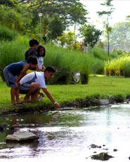 Central Park for Singapore