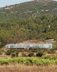 """""""DOSA"""" Museo nel futuro parco archeologico- fluviale di Sarcapos."""