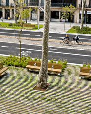 Remodelling of Passeig de St Joan boulevard