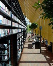Book Mountain and Library Quarter Spijkenisse