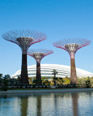 Cooled Conservatories at Gardens by the Bay