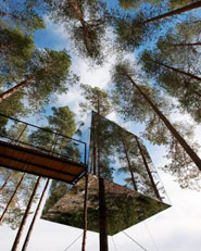 Tree hotel in Harads