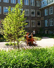 Roeterseiland Campus – University of Amsterdam