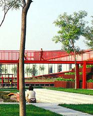 Bridged Gardens