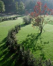 Parco Agricolo Cascina Paolina