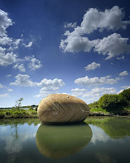 Stephen Turner's Exbury Egg