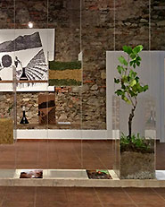 La signora Eugenia e il passero solitario @ Paesaggi Mirati 2014