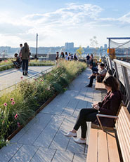 HIGH LINE, SECTION THREE