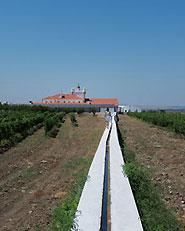 Torre de Palma Wine Hotel
