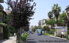 Viale_regina_margherita_normal