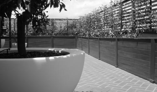 Michelangelo Pugliese — Una terrazza sullo Stretto di Messina