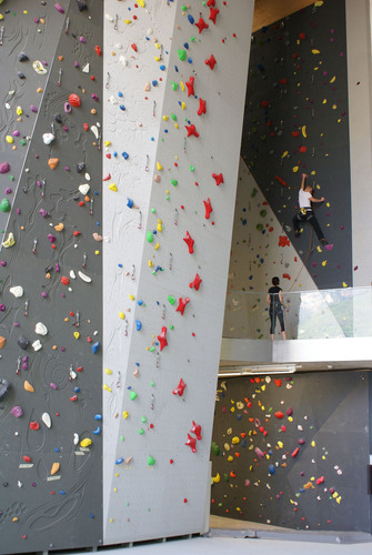 Climbing_hall_7_copy_low_large