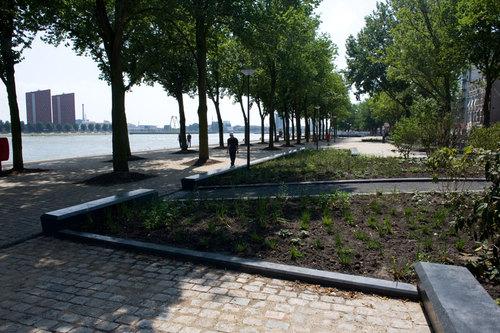 OKRA landschapsarchitecten — Rotterdam Westerkade Parkkade