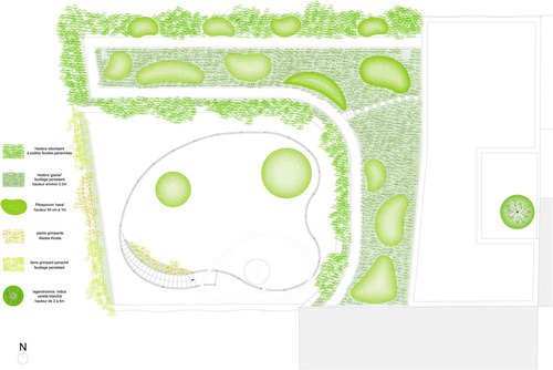 Plan-vegetation_large